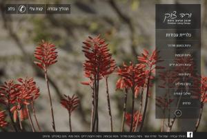 בניית אתר אינטרנט לפרויקט לקוח: ורד צוק